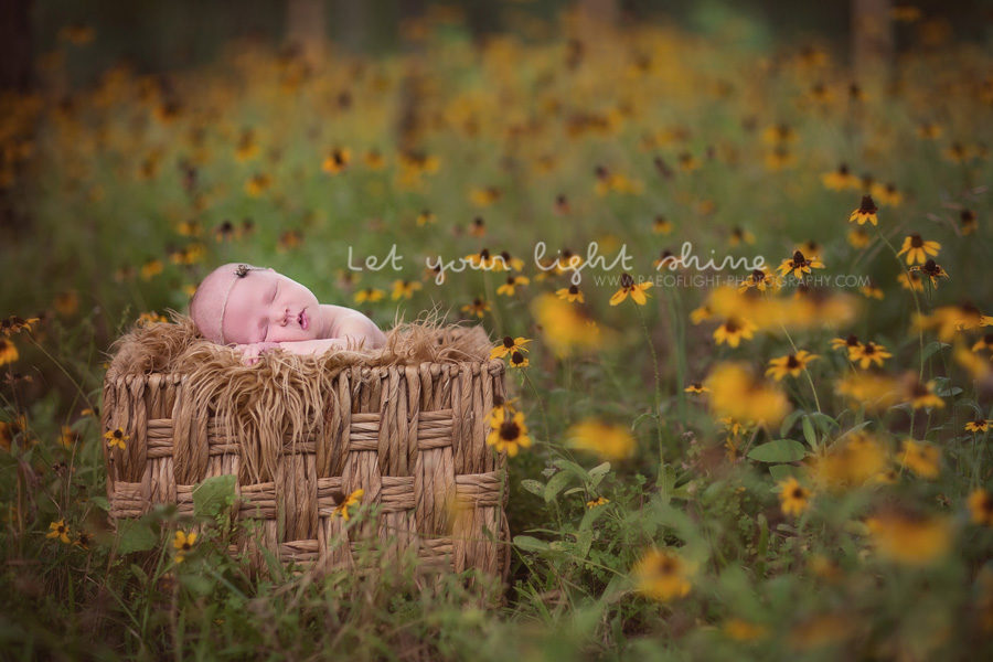 Round Rock Newborn Photographer 1